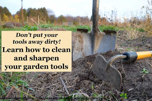 Cleaning and Sharpening Garden Tools for Easier Gardening