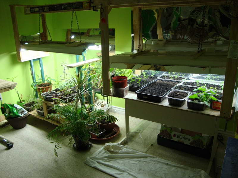 indoor vegetable garden  http://lomets.com