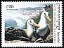 Waved Albatross Phoebastria irrorata