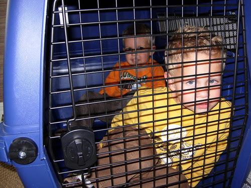 kids in a crate 4