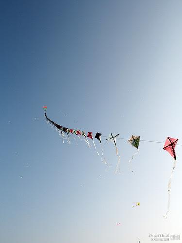 風箏飛翔 #1