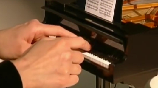 The world's smallest grand piano actually sounds really sweet