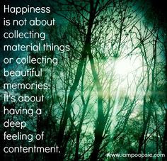 Happiness Is Not About Collecting Material Things Or Collecting