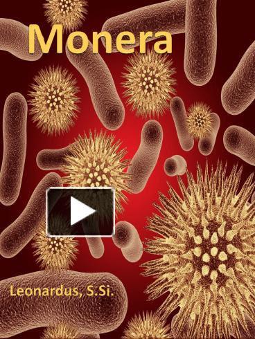 Ppt Monera Powerpoint Presentation Free To View Id 46625c Yjhhn