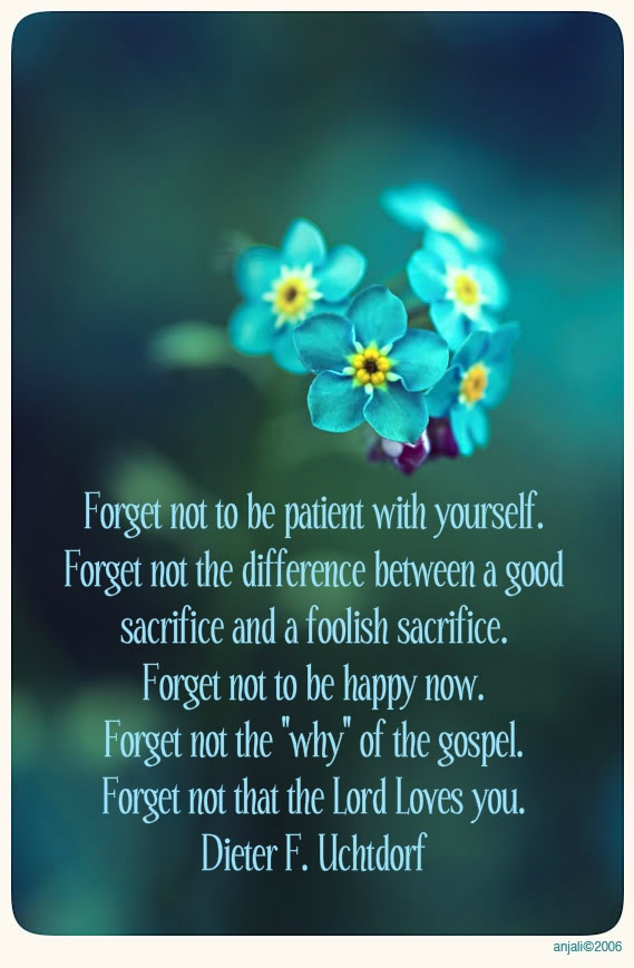 Quotes About Forget Me Not 105 Quotes