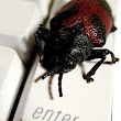 Patch Bash NOW: 'Shell Shock' bug blasts OS X, Linux systems wide open