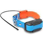 Dogtra Pathfinder TRX Additional GPS-Only Collar, Blue