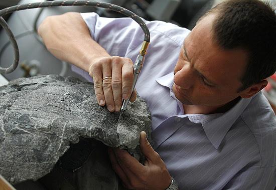 O cientista Tomasz Sulej limpa o fóssil da tartaruga mais antiga já conhecida