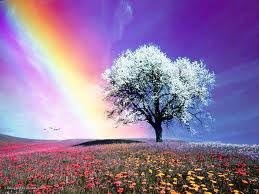 Η φύση της ζωής είναι  η συνεχής εναλλαγή από τη μία κατάσταση στην άλλη.