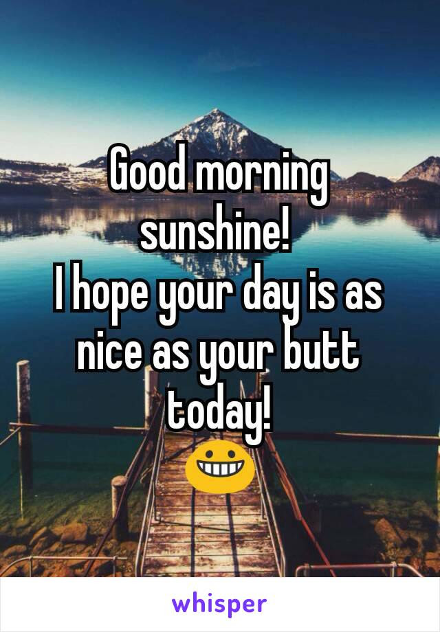 Good Morning Sunshine I Hope Your Day Is As Nice As Your Butt Today