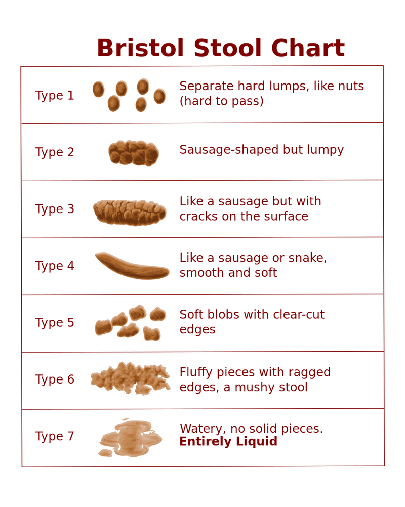 What Does the Shape and Color of My Poop Mean?