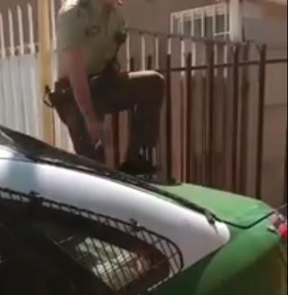 """El """"gracias"""" más dulce de una perrita al policía que la salvó de la atadura que la oprimía"""