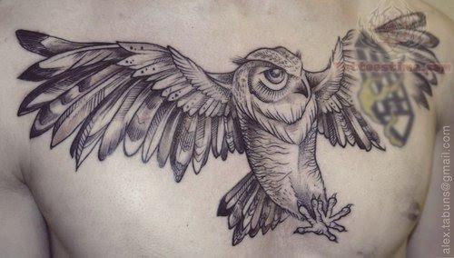 Open Wings Owl Tattoo On Men Chest