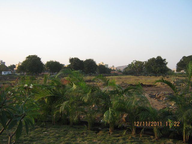 View of the Site - Pankaj Aasmaan  on Lohegaon Wagholi Road at Lohegaon Pune 411 047