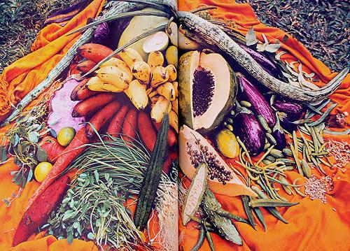 fruits indiens.jpg