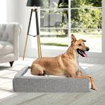 Molecule Air-Engineered Dog Bed, Medium