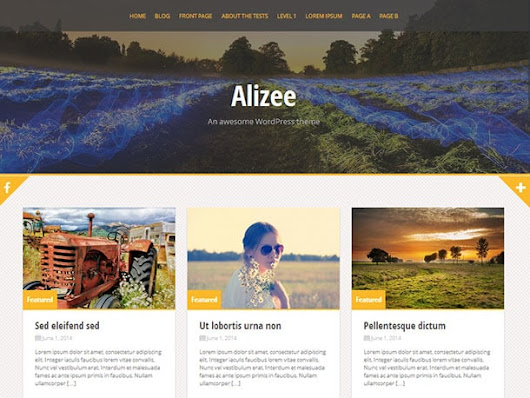 16 Free Parallax WordPress Themes 2014 - aThemes