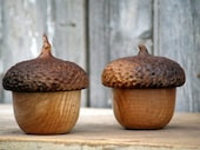 Woodland Acorn Button Box - Keepsake Jewlery Box- Wood Box - Rustic Fall Decor - CattailsWoodwork
