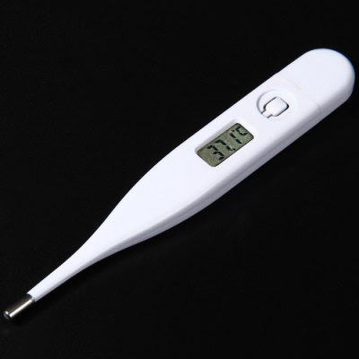 LCD Screen Digital Thermometer-1.10 Online Shopping| GearBest.com