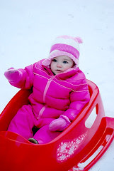 aubs in sled