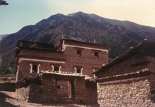 Tsemi house