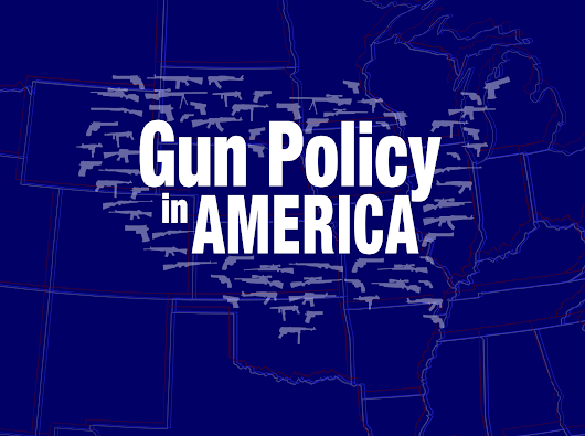 Informing the Gun Policy Debate