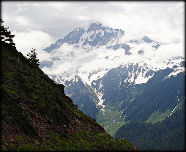 Bald Mountain's view of Mt. Hood