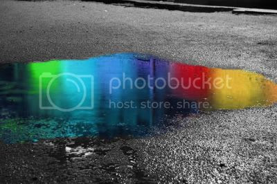 Rainbow Puddle Pictures, Images and Photos