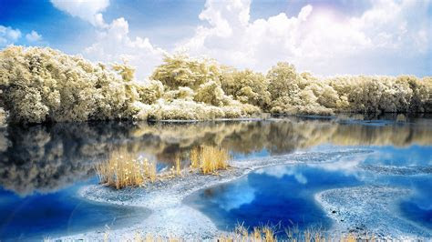 hd wallpaper river forest frost