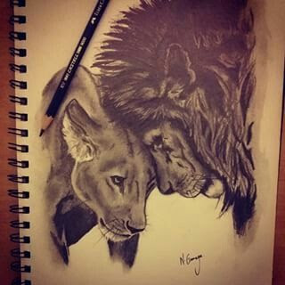 Image Result For Tattoo Designs For Lion And Lioness For Us Lion