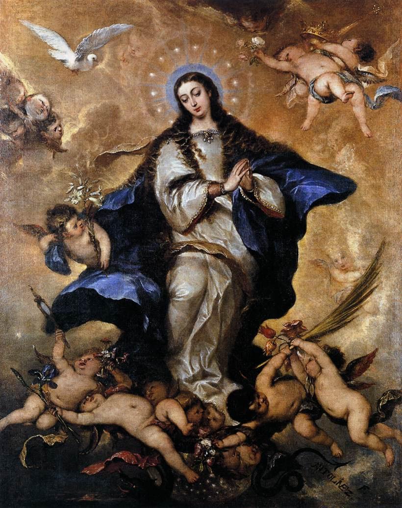 http://catholicismpure.files.wordpress.com/2010/12/immaculb.jpg
