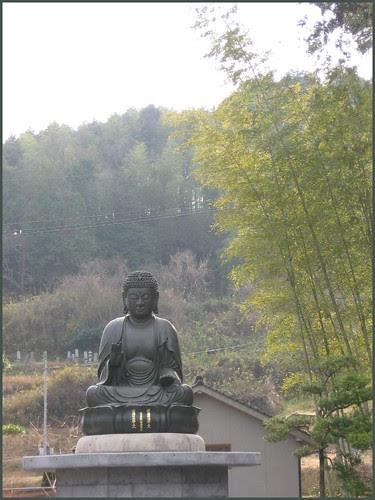 17 Big Amida Buddha