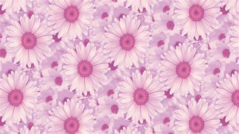 pink background tumblr   amazing hd