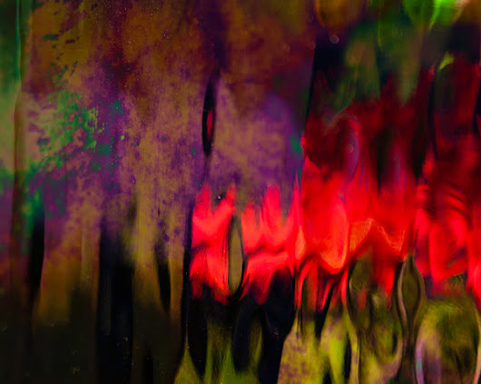 Abstract Color by Erin Kohlenberg