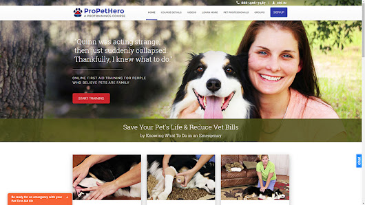 Learn Dog CPR and more with our new Pet First Aid course! — ProCPR Blog