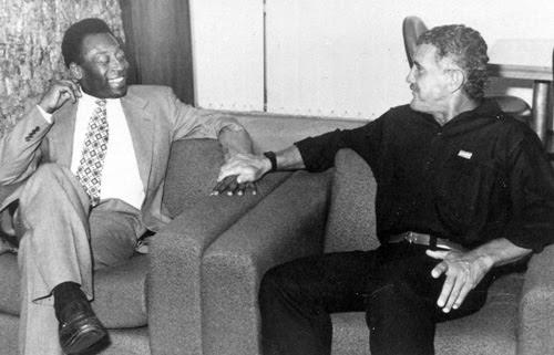 Onça ao lado do 'Rei Pelé' | Foto: Reprodução