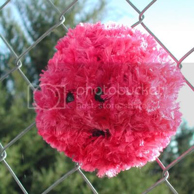 knitted pygmy puff