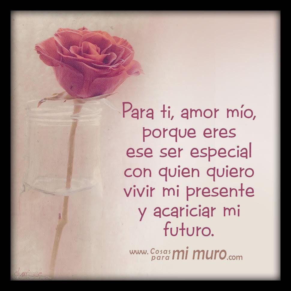 Una Rosa Para Ti Mi Amor Cosas Para Mi Muro