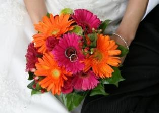 gerber daisies flower wedding