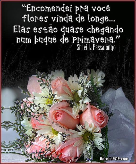 Imagem De Gatinhos Com Frases De Amor Helowinq
