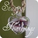 Stacy's flutterings