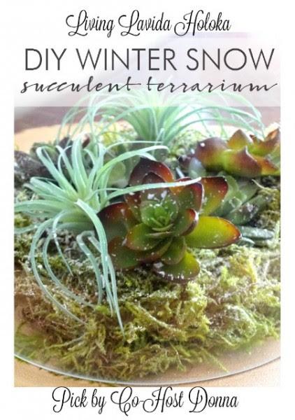 living-lavida-holokasnow-succulent-terrarium