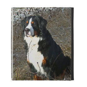 Bernese Mountain Dog iPad Case