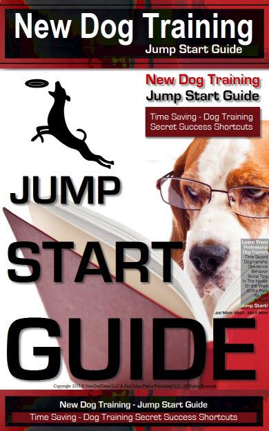 New Puppy New Dog Times Dog Training Books Dog Video
