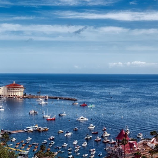 Why Catalina Island In California Best Romantic Honeymoon Destinations - All Honeymoon Spot