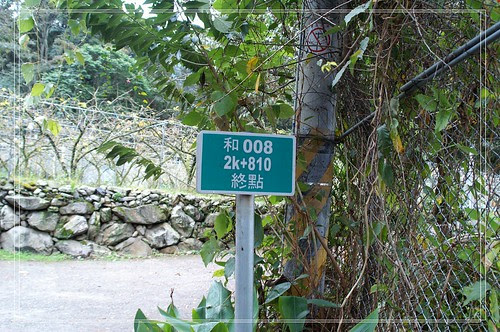 PICT4659