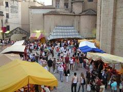 Tortosa, Festa del Renaixement 2008