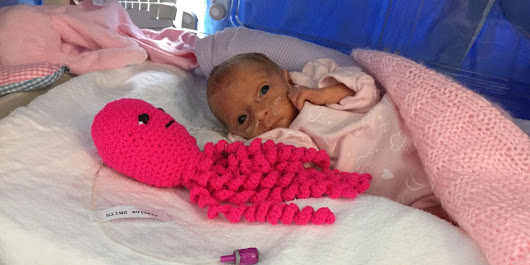 How This Crocheted Octopus Is Changing The Lives Of Preemies