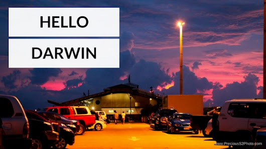 Hello Darwin! - Precious S2 Photography