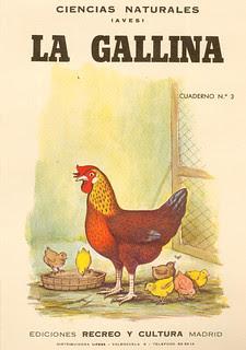 poule 01